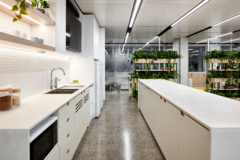 Drop Ceiling in Visual Risk Offices - Sydney