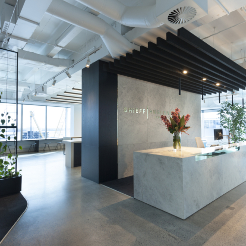 Shieff Angland Offices – Auckland