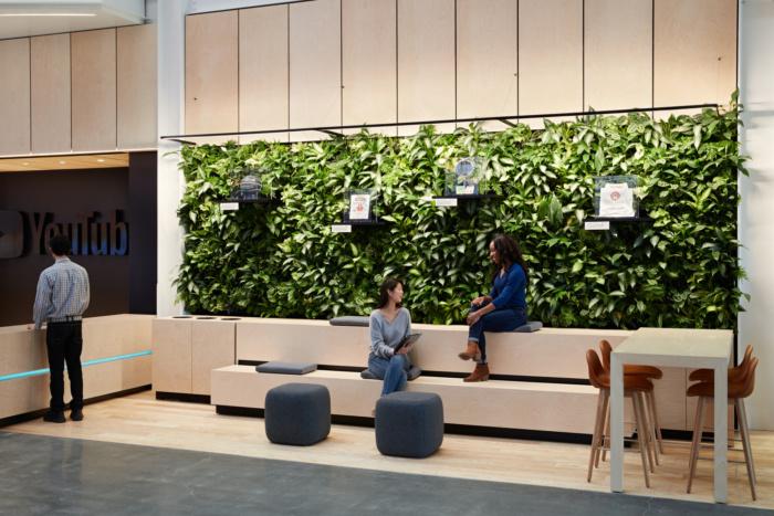 green walls, plants walls, living walls in office design