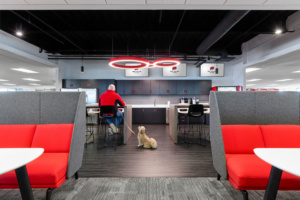 Red Collar Pet Foods Offices - Franklin