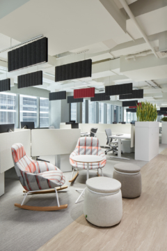 Linear in Takeda Pharmaceuticals Offices - Dubai
