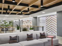 Perimeter / Grazer in Weyco Group Offices - Glendale